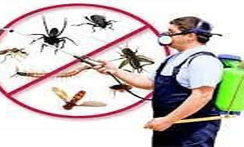 ارخص شركة مكافحة حشرات بالمزاحمية