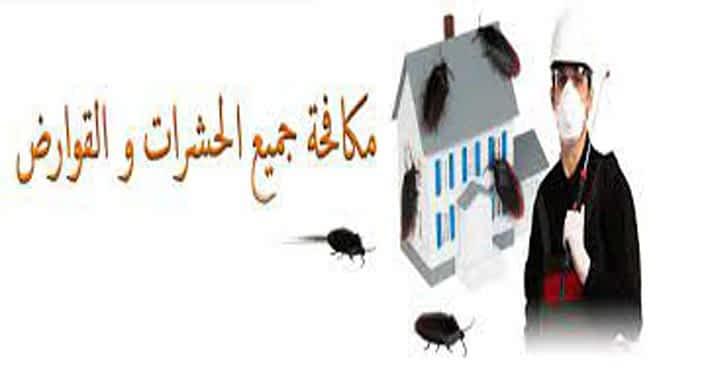 افضل شركة مكافحة حشرات بالمجمعة